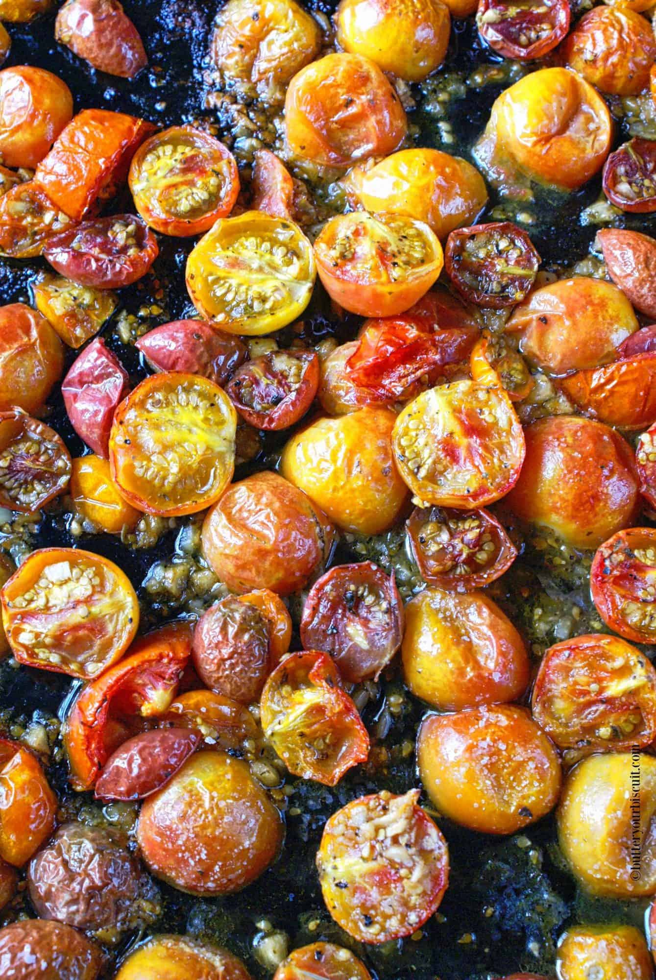 A sheet pan full of garlic roasted tomatoes right out of the oven.