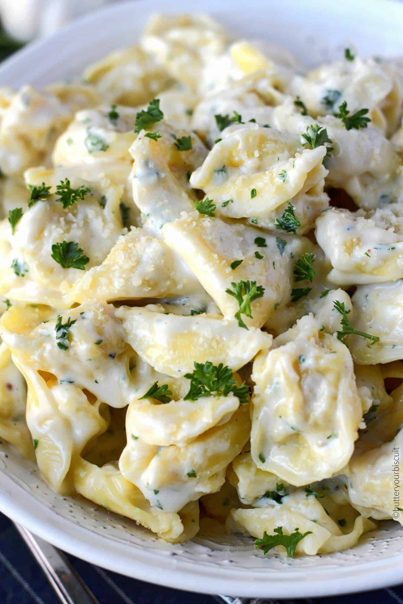 Garlic alfredo cheese tortellini in a white bowl