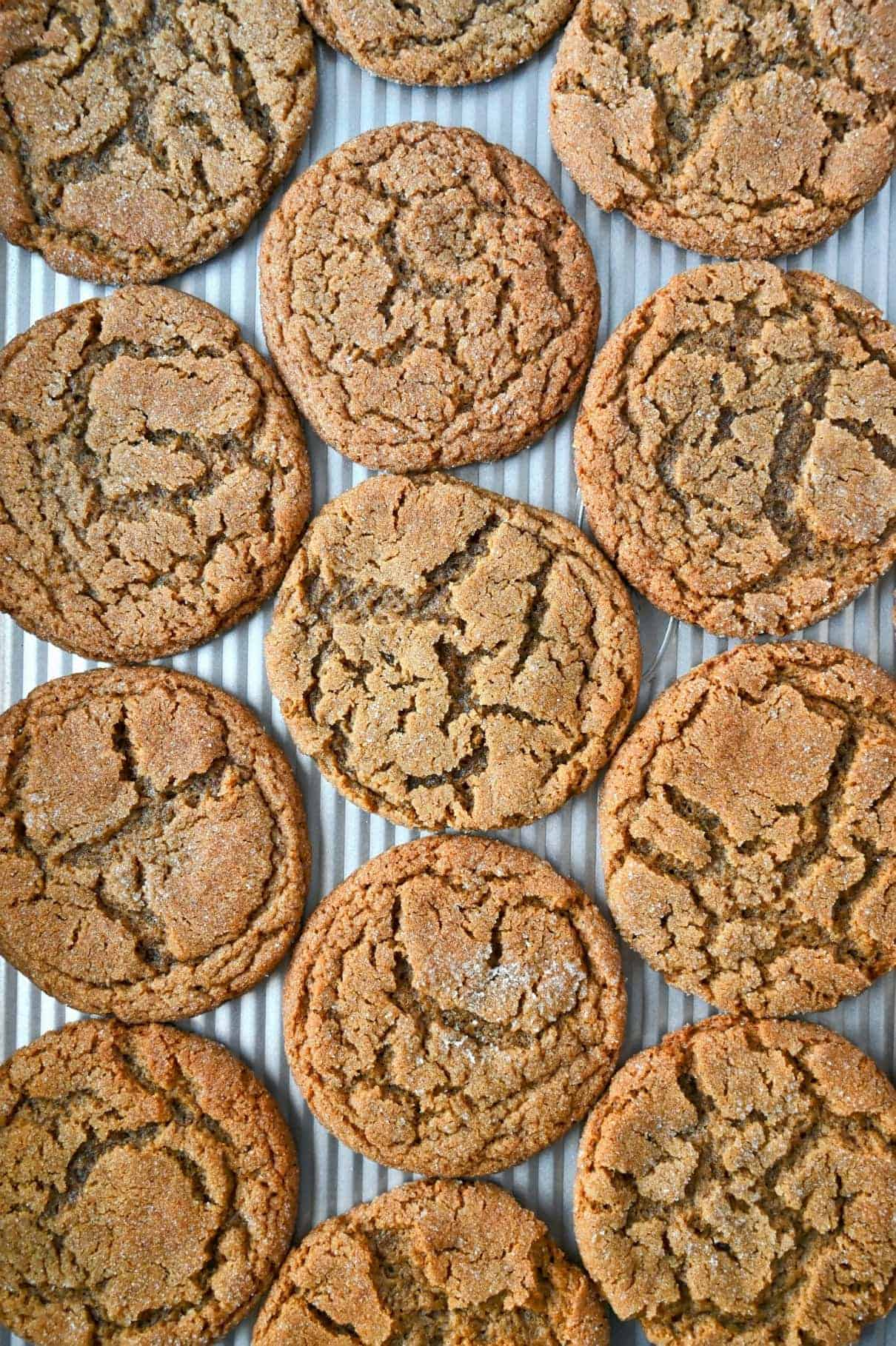 Several ginger snap cookies spread out onto a baking sheet.